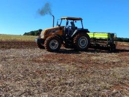 Secretaria de Agricultura realiza o plantio de aveia e trigo